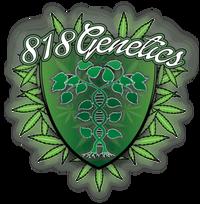 818 Genetics