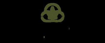 Green Dream Cannabis  logo